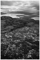 Colorful tundra in the fall above Naknek Lake and Lake Brooks. Katmai National Park ( black and white)