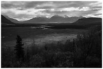 Shaft of light over tundra meadow downstream of Valley of Ten Thousand Smokes. Katmai National Park ( black and white)