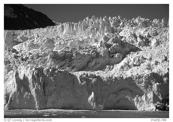 Front of Aialik Glacier. Kenai Fjords National Park (black and white)