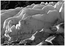 Exit Glacier. Kenai Fjords National Park, Alaska, USA. (black and white)