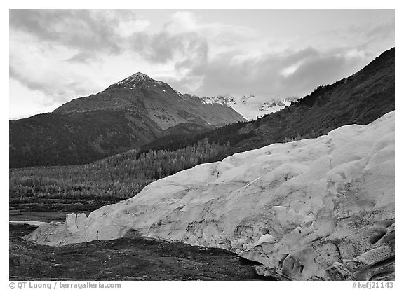 Exit Glacier and mountains at sunset. Kenai Fjords  National Park (black and white)