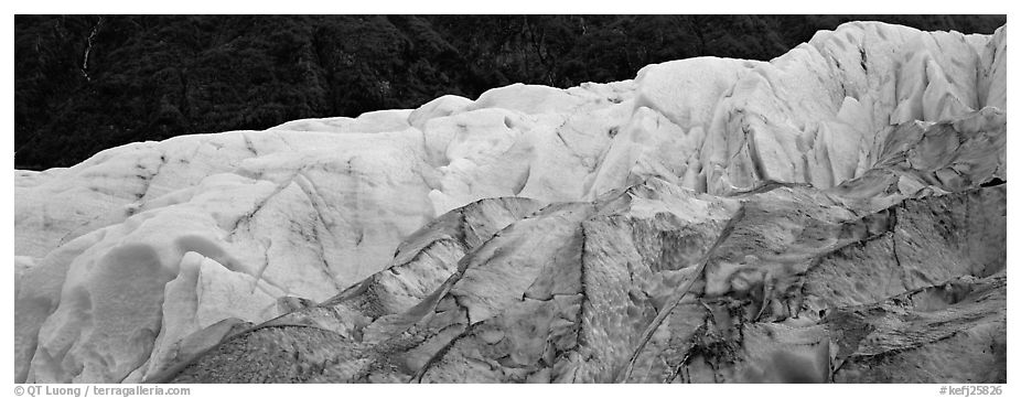 Two ice colors on Exit Glacier. Kenai Fjords National Park (black and white)