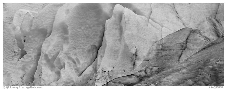 Ice close-up, Exit Glacier. Kenai Fjords National Park (black and white)