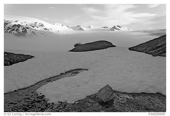 Melting neve in early summer and Harding ice field. Kenai Fjords National Park (black and white)