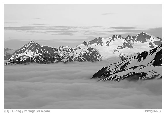 Midnight sunset on peaks above clouds. Kenai Fjords National Park (black and white)