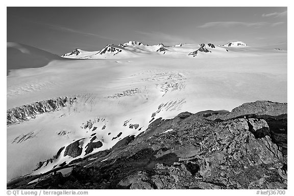 Lichen-covered rocks and Harding ice field. Kenai Fjords National Park (black and white)