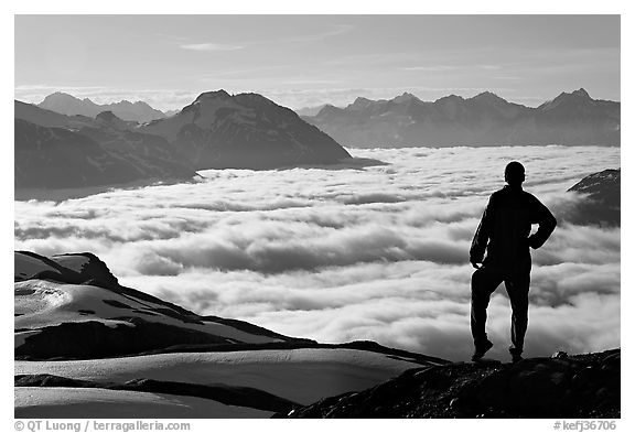 Hiker contemplaing a sea of clouds. Kenai Fjords National Park (black and white)