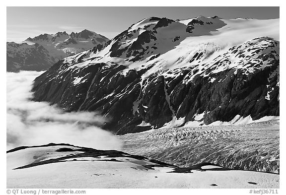 Peaks, glacier, and sea of clouds, morning. Kenai Fjords National Park (black and white)