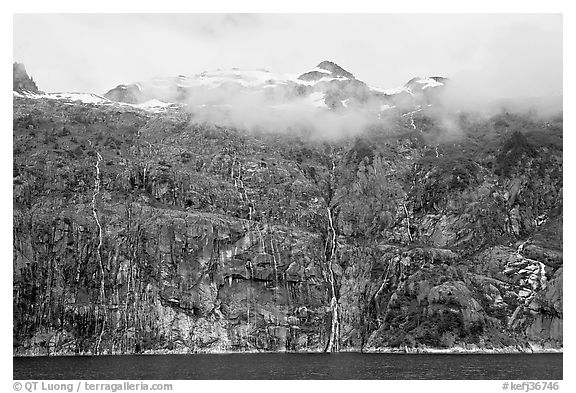 Wall of waterfalls streaming into Cataract Cove, Northwestern Fjord. Kenai Fjords National Park (black and white)