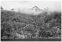 Wall of waterfalls streaming into Cataract Cove, Northwestern Fjord. Kenai Fjords National Park, Alaska, USA. (black and white)