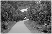 Exit Glacier trail with marker showing glacial retreat. Kenai Fjords National Park ( black and white)