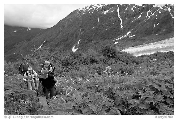 Women with child carrier backpacks on Harding Icefield trail. Kenai Fjords National Park (black and white)