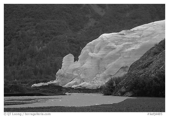 Exit Glacier from glacial plain. Kenai Fjords National Park (black and white)