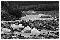 Icebergs and outwash plain in autumn. Kenai Fjords National Park ( black and white)