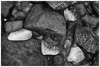 Close-up of rocks and icebergs near Exit Glacier. Kenai Fjords National Park ( black and white)
