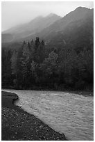 Stream, trees in autum foliage, and misty mountains. Kenai Fjords National Park ( black and white)