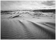 Sand ripples in Arctic dune field. Kobuk Valley National Park ( black and white)