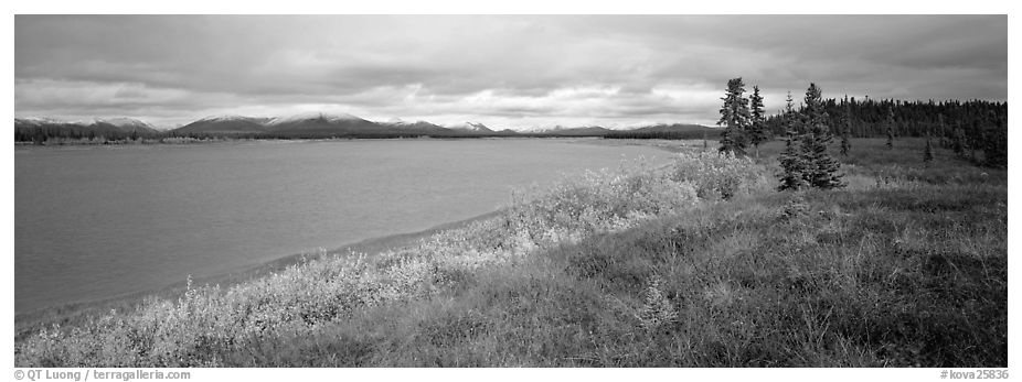Tundra and river. Kobuk Valley National Park (black and white)