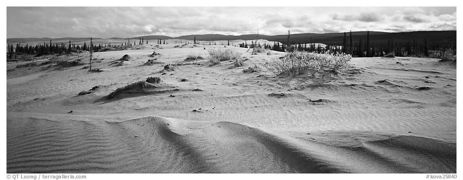 Arctic dune field. Kobuk Valley National Park (black and white)