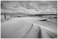 Ripples in the Great Sand Dunes. Kobuk Valley National Park ( black and white)