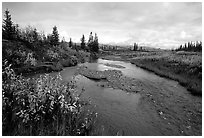 Kavet Creek, with the Great Sand Dunes in the background. Kobuk Valley National Park, Alaska, USA. (black and white)