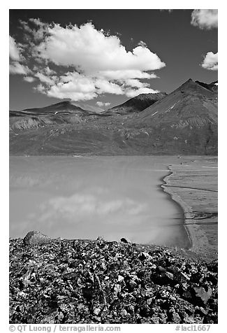 East end of Turquoise Lake. Lake Clark National Park (black and white)