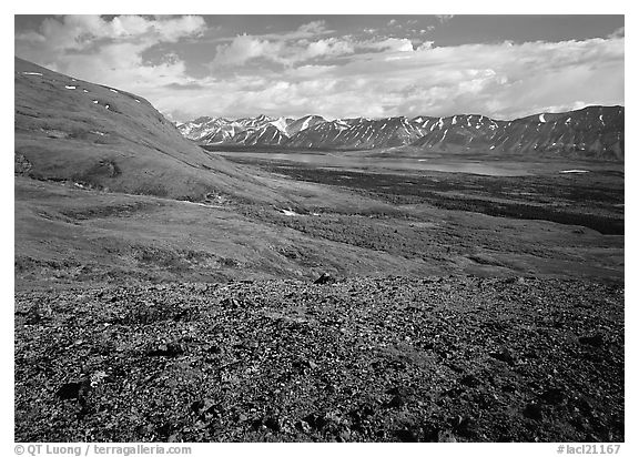 Tundra with Twin Lakes and mountains in the distance. Lake Clark National Park (black and white)