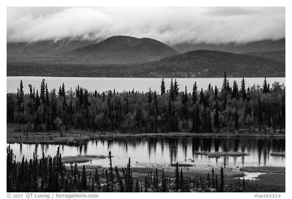 Beaver Pond and Lake Clark. Lake Clark National Park (black and white)