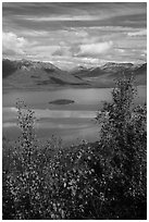 Lake Clark and islet framed by trees in autumn foliage. Lake Clark National Park ( black and white)