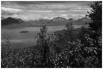 Trees in fall foliage and Lake Clark. Lake Clark National Park ( black and white)