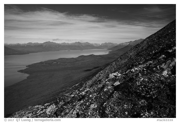 Tundra plants and Lake Clark (Qizhjeh Vena). Lake Clark National Park (black and white)