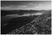 Tundra in autumn, Lake Clark from Tanalian Mountain. Lake Clark National Park ( black and white)