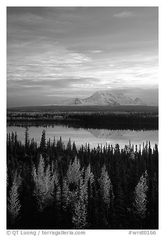 Mt Wrangell reflected in Willow lake, early morning. Wrangell-St Elias National Park (black and white)
