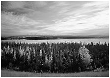 Forest, Willow Lake, and Wrangell range in the distance. Wrangell-St Elias National Park ( black and white)