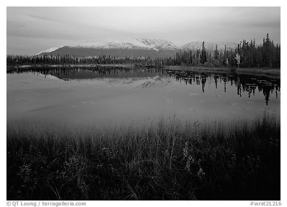 Pond with mountain reflections at dusk, near Chokosna. Wrangell-St Elias National Park (black and white)
