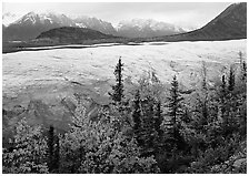 Trees, Root Glacier, and Wrangell Mountains. Wrangell-St Elias National Park ( black and white)