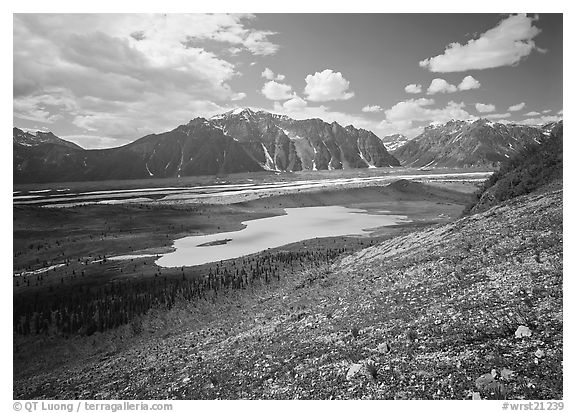 Kennicott Glacier and lake in the distance. Wrangell-St Elias National Park (black and white)