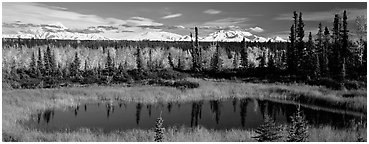 Autumn landscape with pond, forest, and distant mountains. Wrangell-St Elias National Park (Panoramic black and white)
