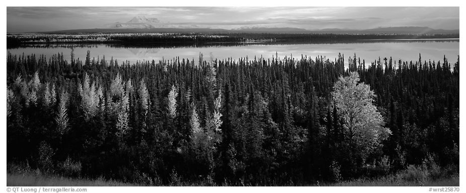 Autumn scenery with forest, lake, and distant mountains. Wrangell-St Elias National Park (black and white)