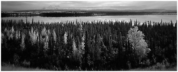 Autumn scenery with forest, lake, and distant mountains. Wrangell-St Elias National Park (Panoramic black and white)