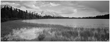 Reeds, pond, and mountains with open horizon. Wrangell-St Elias National Park (Panoramic black and white)
