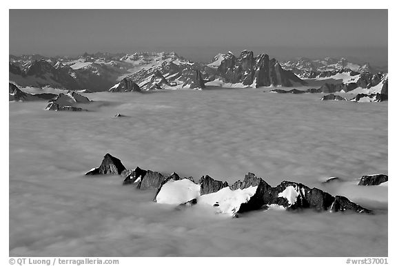Aerial view of peaks emerging from sea of clouds, St Elias range. Wrangell-St Elias National Park (black and white)