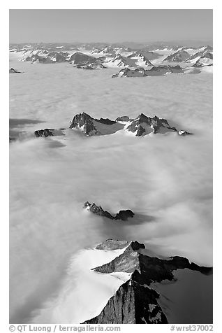 Aerial view of ridges and summits emerging from sea of clouds, St Elias range. Wrangell-St Elias National Park (black and white)