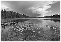 Crystal Lake with starting afternoon shower. Wrangell-St Elias National Park ( black and white)