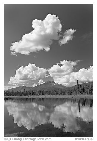 Puffy clouds reflected in lake. Wrangell-St Elias National Park (black and white)