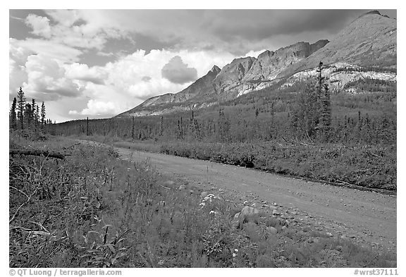 McCarthy road and mountains. Wrangell-St Elias National Park (black and white)