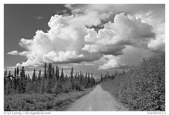 Mc Carthy road and afternoon thunderstorm clouds. Wrangell-St Elias National Park (black and white)