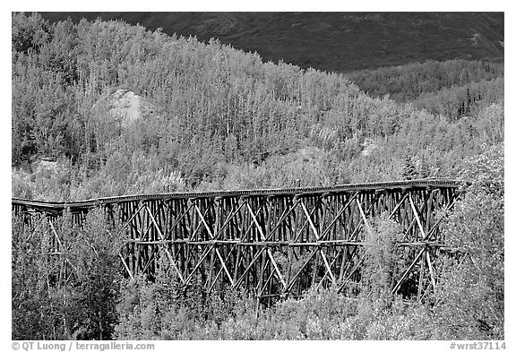 Gilahina trestle and hills. Wrangell-St Elias National Park (black and white)