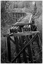 Old railroad bed on Gilahina trestle. Wrangell-St Elias National Park ( black and white)
