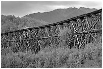 Historic Railroad trestle crossing valley. Wrangell-St Elias National Park ( black and white)